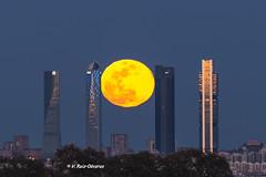 La luna atrapada en la ciudad (VRuizOlivares) Tags: ciudad cielo rascacielos noche luna edificio tamron nikon city sky skyscraper night moon building madrid llena lunallena cuatrotorres full fullmoon