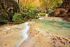 Autumnal Paradise (Hector Prada) Tags: urederra otoño autumn bosque forest rio river