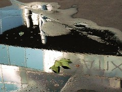 les feuilles mortes (*F~) Tags: paris france trees quai leaves water rain reflections september walking walkers pluie