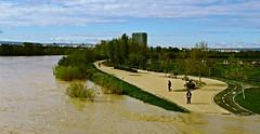 Ebro en Zaragoza (portalealba on holidays) Tags: zaragoza zaragozaparque aragon españa spain ebro portalealba canon eos1300d agua ranillas magiccity 1001nightsmagiccity 1001nightsmagicwindow
