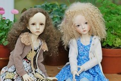 Blue (stashraider) Tags: dollstown dt7 resin ball jointed doll