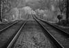 Emschertalbahn (wpt1967) Tags: castroprauxel eos6d emschertalbahn ruhrgebiet ruhrpott schienen canon100300mm spring tracks train wpt1967