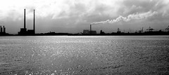 Ringsend from Bull Wall (Winter Ghosts) Tags: bullwall greatsouthwall ringsend esbchimneys dublin port sea water silhouette chimneys stacks