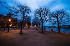 Dresden2018_023 (schulzharri) Tags: dresden sachsen saxony deutschland germany europa europe night nacht city oldtown dark