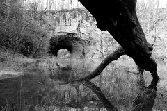 "Rakov Skocjan SLO - ""Big Natural Bridge"" (Fabrizio Lucchese 1') Tags: slovenia gamberi rio acqua water wasser river tronco roccia bw canon760d fabriziolucchese spiegelung reflection brücke bridge slowenien slovenija rakovskocjan riodeigamberi мост riflessi"