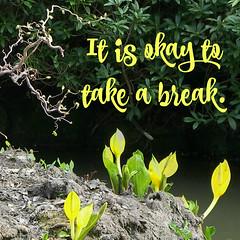 Take a Break (teresue) Tags: yorkshireharrogateflickr 2007 uk unitedkingdom greatbritain england yorkshire harrogate valleygardens skunkcabbage picmonkey words wordstoliveby quotation quotes