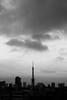L1040491 (Zengame) Tags: leica leicasl leicasltyp601 roppongi roppongihills ropponngi sl summilux summiluxsl50mmf14asph architecture japan landmark tokyo tokyotower tower typ601 ズミルックス ズミルックスsl ライカ 六本木 六本木ヒルズ 日本 東京 東京タワー 港区 東京都 jp