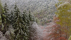 Spring Snowfall (ab.130722jvkz) Tags: italy veneto alps easthernalps dolomiti snowfall