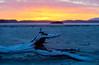 YYY_6851 (Christy Turner Photography) Tags: art britishcolumbia tofino beach beautiful sunset bc canada west coast