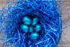Chocolate eggs (WillemijnB) Tags: blue bright eggs egg pasen easter ostern decoration glistening chocolate sweet eitjes eieren eier topview