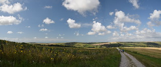 Heading Down to the Cuckmere Valley