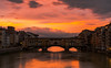 Ponte Vecchio Florence (zizzyphotobox) Tags: sony ilce7rm3 florence firenze