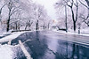 Happy Spring they said (RomanK Photography) Tags: centralpark landscape manhattan nyc newyorkcity morning snow snowstorm sonyalpha winter