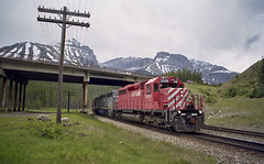 Westbound at Stephen (Trevor Sokolan) Tags: canadian canada cpr cp cprail sd40 sd452lease leaser emd gmd generalmotors diesel locomotive divide bc britishcolumbia mountain mountains rockies kickinghorse laggansub railway railroad railfan rail railfanning trains train trainspotting tracks