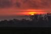 Sunrise (sebastienloppin) Tags: sunrise france marne canon 6dmark2 tamron 15600 landscape paysage nature orange rouge ciel sky nuages clouds trees sun beauty great capture bestow bestof photographie photography photographe colors couleurs burn burning