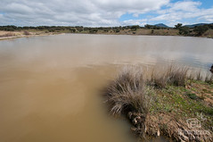 La Charca (Jexweber.fotos) Tags: badajoz cabezadelbuey españa extremadura fotonazos lacharca laserena laguna arroyo charca lago primavera