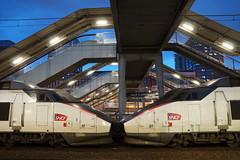 TGV SE n° 19 + n° 01  ( PSE - Paris / Sud-est ) Gare de Lille Flandres (CHABOT Christophe) Tags: frenchrailroad frenchrailway frenchtrain tgv tgvse tgv01 tgvsudest garedelille garelilleflandres lilleflandres sncf hauptbahnhof bahnof bahnhof traingrandevitesse hautsdefrance highspeedtrain hochgeschwindigkeitszug psen°01 tgvpsen°01 tgvsen°01 chemindefer französischelokomotive französischerhochgeschwindigkeitszug fasttrain schnellzug schnellzuch héichschnellzug spoorweg spoorwegfrankrijk railwayfrance eisenbahnfrankreich eisenbahnjernbane frankrigjernbaneferrovia franciaferrocarril carmillon frenchtrainhighspeed train trainhighspeed frenchtrainhighspeedn°01 trainhighspeedn°01 tgvn°01