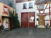 In Oberursel (fotoculus) Tags: hessen oberursel käsbachtal pilzfreundesüdhessensulzbach deutschland