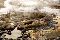 Yellowstone NP Trip - Day 3 (41) (tommaync) Tags: yellowstone yellowstonenationalpark yellowstonenp nationalpark national park wyoming winter nikon d7500 february 2018 snow nature hotsprings steam bacteria minerals water
