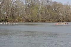 IMG_8315 (woodbridgevikings_crew) Tags: rowing crew woodbridgecrew athletics vikings woodbridge