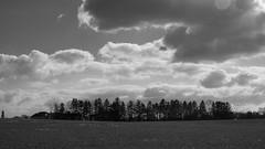 Vivid Clouds over the Tree Line (Radical Retinoscopy) Tags: clouds vivid blackandwhite blackwhite longexposure nd filter polarizer lancaster treeline trees field contrast monochrome canont6s canon1740