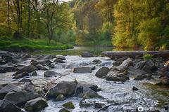Die Isen bei Steinhöring im Landkreis Mühldorf am Inn (john_berg5) Tags: spring isen river bayern germany light sunlight