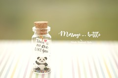 There is no one like you,Tiny message in a bottle,Miniatures,Personalised Gift,love card Valentine Card,Gift for her/him,Girlfriend gift, birthday card, message card and miniatures card ideas (charles fukuyama) Tags: panda cuteanimals handmadecard custom unique tiny bottle illustration glitter homedecor deskdecor decoration paperart kikuike greetingscard holidaycard