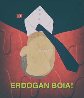 ERDOGAN BOIA