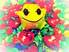 """Frog Prince""  (Once Upon A Time) (seanwalsh4) Tags: magicyellowfrog kissme princecharming fairytale macro love hearts magic romance spell macromondays evil witches princeinside thefrogprince onceuponatime 19032018"