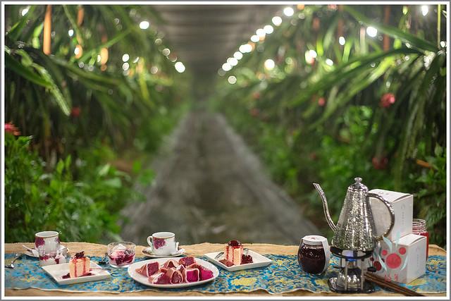 跟著愛玩客,一起暢遊好年小農的火龍果園