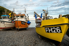 Silver Queen, Kingfisher and The Blue Marigold!… (AJFpicturestore) Tags: cadgwith cornwall cornishviews workingboats fishing gloves alanfoster