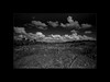 M2460447-Edit.jpg (Martin van der sanden) Tags: blackandwhite leicamonochrom emeraldamarsh florida leica 18mm f38