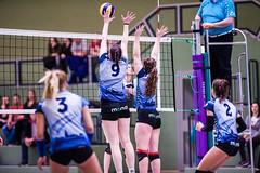 SCNNorderstedt (163 von 250) (Michael Scharf - MTS Sportfotos) Tags: volleyball damen frauen regionalliga sport ball halle neubrandenburg norderstedt