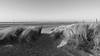 At the beach (neya25) Tags: strand beach sand bw blackandwhite blackwhite schwarzweiss monochrome olympusomdem10 mzuiko 918mm wide angle spiekeroog nordsee north sea water