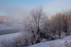 Cold morning (akk_rus) Tags: 2470 28 nikkor nikkor247028 nikon d800 nikond800 russia россия europe европа smolensk смоленск winter snow зима снег season