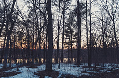Mississippi River Sunset at Crow Wing State Park, Minnesota (Tony Webster) Tags: april brainerd crowwingstatepark minnesota mississippiriver biome birch branch evening forest freezing grove morning nature oldgrowthforest reflection sky snow spring sprucefirforest statepark sunlight sunset temperateconiferousforest tree water winter wood woodland unitedstates us