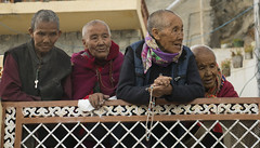 (Flora Eiffel) Tags: india inde himachalpredesh himalaya tibet explore travel voyage moines people portrait