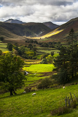 Valley of the lakes (ninemileseyles) Tags: outside auto lakescape art eos eau water cloud sky red flower nature blue tree lake district green flowers light sun clouds park landscape road house farm trees yellow pink by old new orange garden
