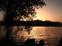 IMG_5996 (farzaneh_kh_89) Tags: sunset tree lake sun silhouette afternoon sunrise lanscape water sky