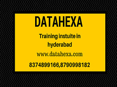 datahexa (1) (rritectrainings) Tags: data sciece machine learning deep artifical intelligence natural language process