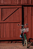 Bike & Barn (Perry J. Resnick) Tags: 2018 pjresnick perryjresnick pjresnickgmailcom pjresnickphotographygmailcom ©2018pjresnick ©pjresnick 2017 ©2017pjresnick light fuji fujifilm digital shadow texture shadows angle perspective fujinonxf35mmf14r 35mm xf35mm xf35mmf14 white xf fujinon resnick issaquahwa bike bicycle barn mutedred red green