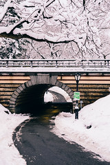 If the path be beautiful, let us not ask where it leads - Anatole France (RomanK Photography) Tags: centralpark landscape manhattan nyc newyorkcity morning road snow snowstorm sonyalpha trees winter