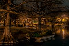 The Park in the Dark..:) (Jims_photos) Tags: texas trees unitedstates outdoor outside adobelightroom adobephotoshop shadows jimallen jimsphotos jimsphotoswimberleytexas lightroom landscape nopeople nikond750 nightphotos nightshot newbraunfelstexas