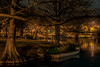 The Park in the Dark..:) (Jims_photos) Tags: texas trees unitedstates outdoor outside adobelightroom adobephotoshop shadows jimallen jimsphotos jimsphotoswimberleytexas lightroom landscape nopeople nikond750 nightphotos nightshot newbraunfelstexas