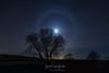 Vivid Lunar halo (jac.photography49) Tags: moon moonlight stars samyang sky lough loughfoyle night nightsky tree afterdark halo ngc
