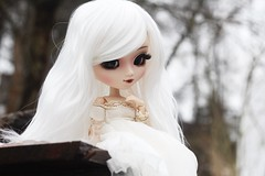 (hauntiing) Tags: pullip pullips blanche doll dolls toy toys pullipblanche pullipdoll pullipdolls pullipphotography dollphotography toyphotography