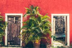 Las hermanas - Hacienda San Pedro Chimay (julien.ginefri) Tags: mexico america latinamerica yucatan hacienda méxico yucatán sanpedrochimay