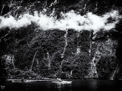 milford sound kayak (AlistairKiwi) Tags: nz newzealand mountain travel landscape olympus omd blackandwhite monochrome sky rock photo sound fiordland milford rain water sea kayak mountainside