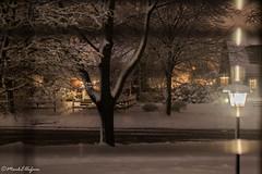 Snowy Night (Mark.W.E) Tags: 2018 april canon canon70d city milwaukee night sigma sigma30mm snow snowfall snowing spring urban wisconsin