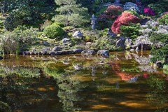 Morning glow at Hakone Gardens (PeterThoeny) Tags: saratoga california siliconvalley sanfranciscobay sanfranciscobayarea southbay hakonegardens japanesegarden garden park tree pond reflection water waterreflection morning day sony sonya7 a7 a7ii a7mii alpha7mii ilce7m2 fullframe vintagelens dreamlens canon50mmf095 canon 1xp raw photomatix hdr qualityhdr qualityhdrphotography rock landscape fav100